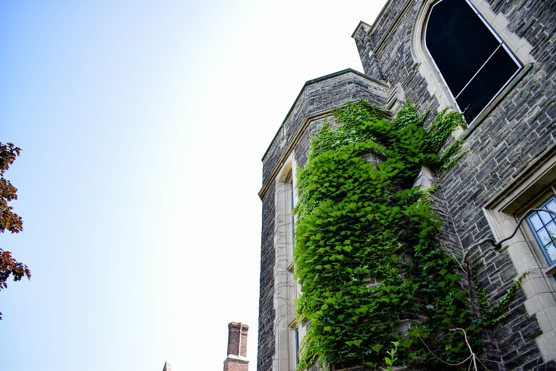 Image of University Hall, McMaster University